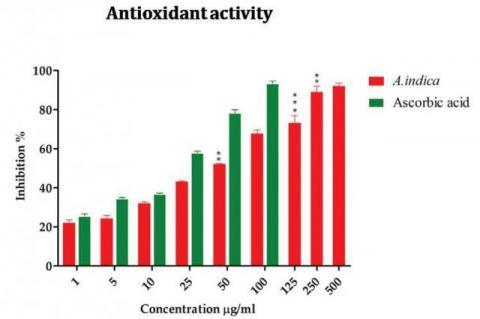 Antioxidant potential of A. bracteolata
