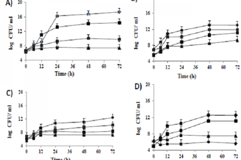 Growth kinetics of LAB strains (A) Bifidobacterium animalis subsp lactis Bb12, (B) Bifidobacterium bifidum Bb443, (C) Lactobacillus acidophilus LbA-CECT4529, (D) Lactobacillus plantarum LbP-CECT 748 monocultivated on complex media based on different substrates (date powder ■ DP, date core ♦DC with or without lentils ▲CL) and in standard medium●MRS.