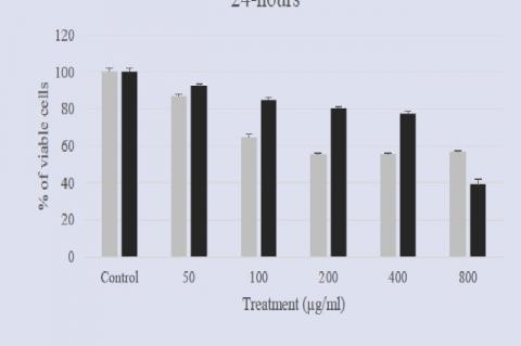 Cytotoxicity of ethanol and dichloromethane extracts of E. longifolia against nasopharyngeal carcinoma (ORL-115) cell lines at 24-hours incubation period